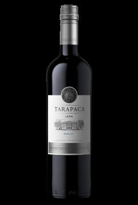Leon de Tarapaca Merlot title=